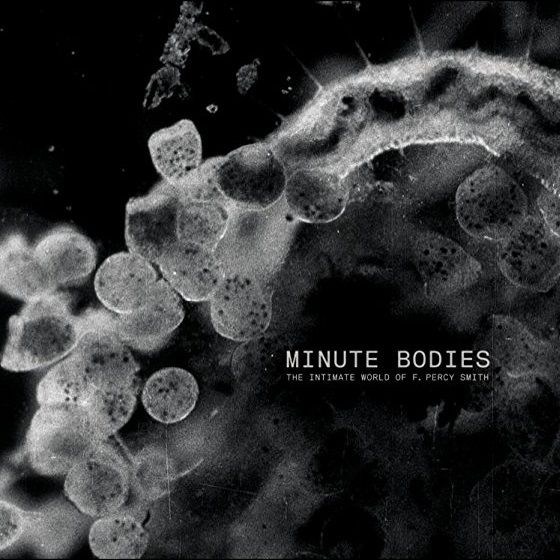 Image: Minute-Bodies-The-Intimate-World-of-F.-Percy-Smith-Cover.jpg