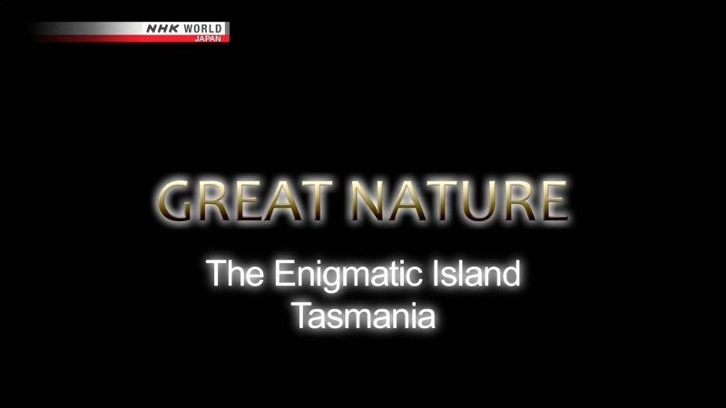 Image: The-Enigmatic-Island-Tasmania-Cover.jpg