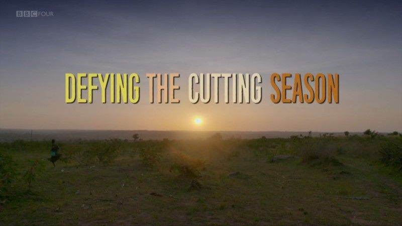 Image: Defying-the-Cutting-Season-Cover.jpg