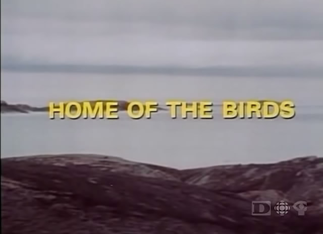 Image: Home-of-the-Birds-Cover.jpg