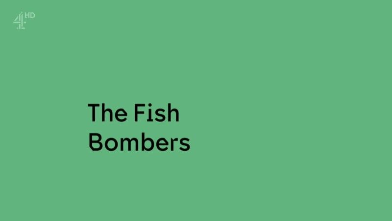 Image: The-Fish-Bombers-Cover.jpg