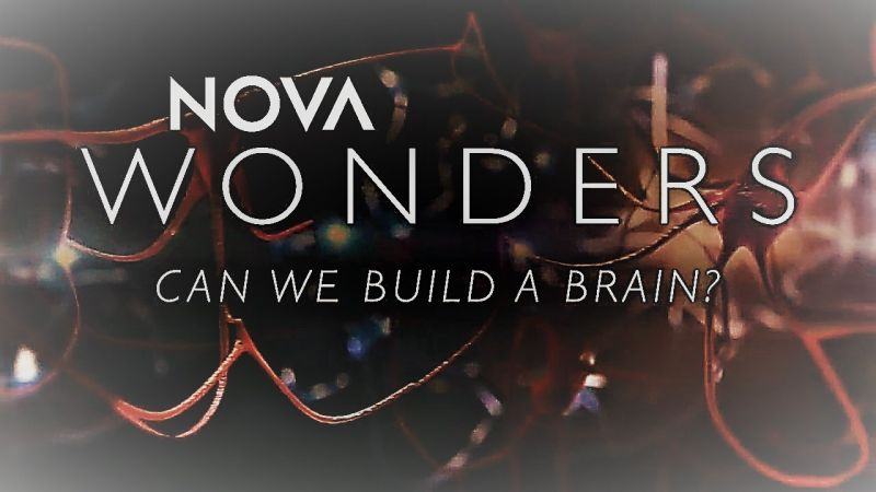 Image: Wonders-Series-1-Part-4-Can-We-Build-a-Brain-Cover.jpg