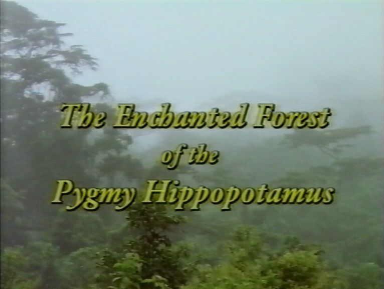Image: The-Enchanted-Forest-of-the-Pygmy-Hippopotamus-Cover.jpg