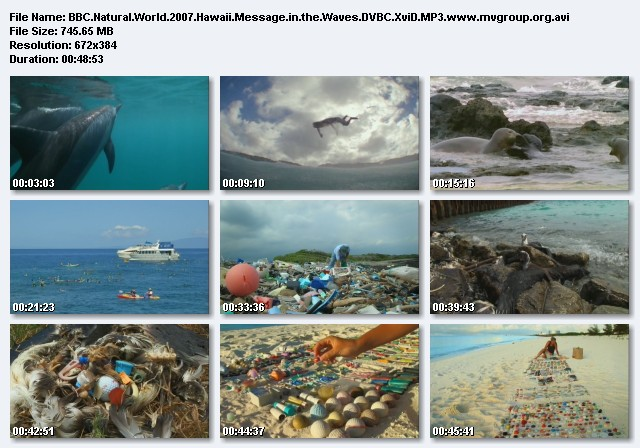 Image: Hawaii_-_Message_in_the_Waves_Screen0.jpg