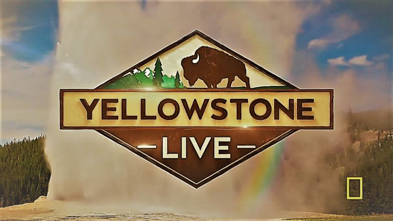 Image: Yellowstone-Live-Series-1-Cover.jpg