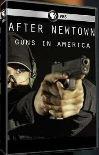 Image: After-Newtown-Guns-in-America-Cover.jpg