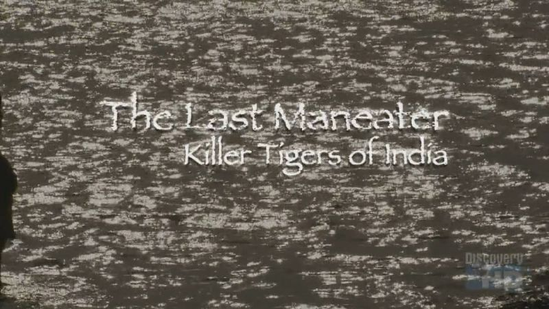 Image: The-Last-Maneater-Killer-Tigers-of-India-Cover.jpg