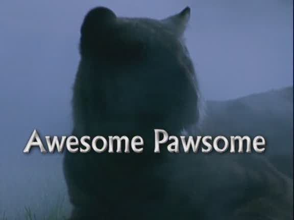 Image: Awesome-Pawsome-Cover.jpg