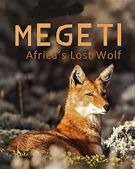 Image: Megeti-Africas-Lost-Wolf-Cover.jpg