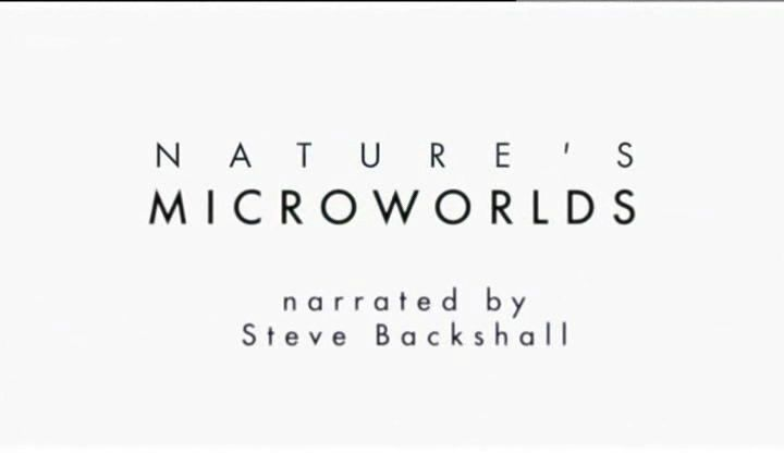 Image: Nature-s-Microworlds-Cover.jpg