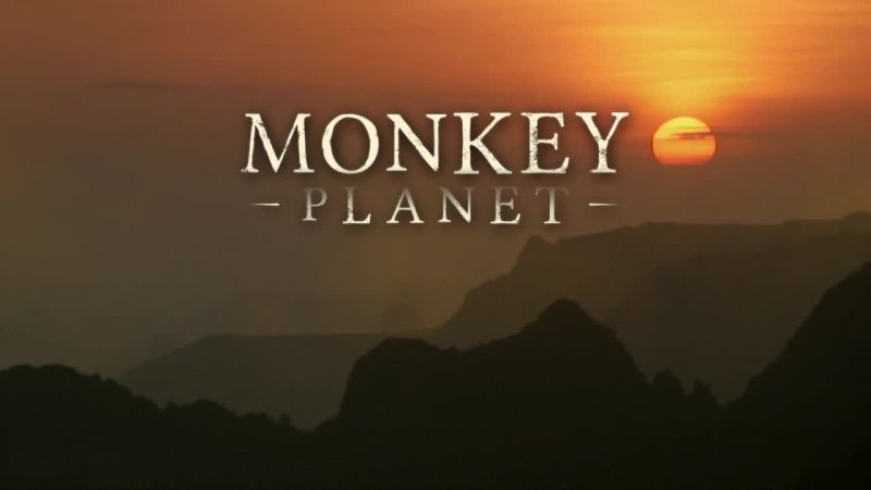 Image: Monkey-Planet-BBC-Cover.jpg