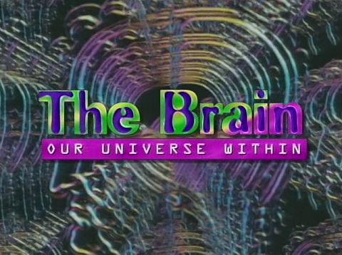 Image: The-Brain-Our-Universe-Within-Cover.jpg