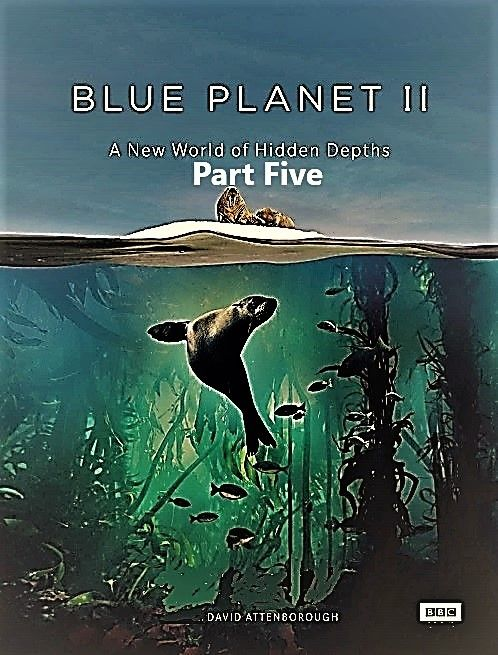 Image: Blue-Planet-II-Part-5-Green-Seas-Cover.jpg