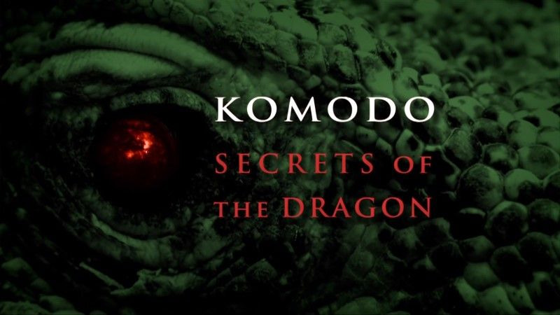 Image: Komodo-Secrets-of-the-Dragon-BBC-1080p-Cover.jpg