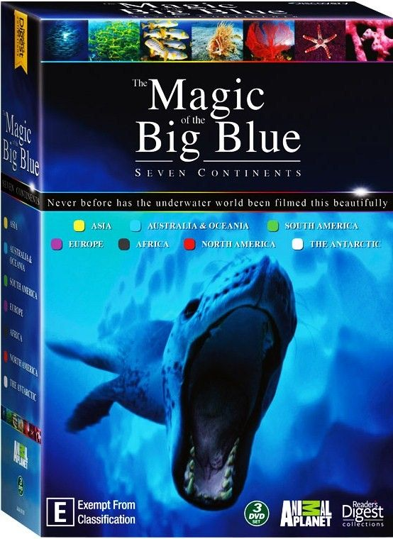 Image: The-Magic-of-The-Big-Blue-Cover.jpg