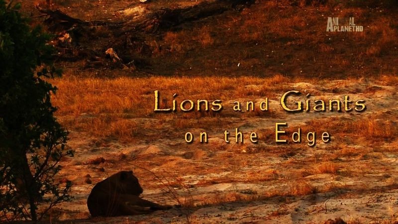 Image: Lions-and-Giants-Cover.jpg