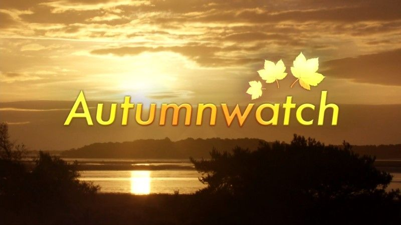Image: Autumnwatch-2016-Cover.jpg