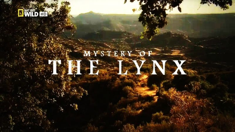 Image: Mystery-of-the-Lynx-Cover.jpg