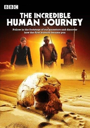 Download BBC The Incredible Human Journey 1of5 Out of Africa 720p BluRay x264 AAC  mp4 Torrent