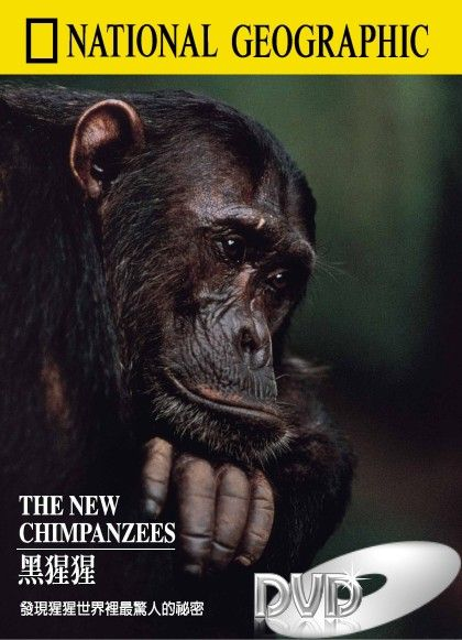 Image: The-New-Chimpanzees-Cover.jpg