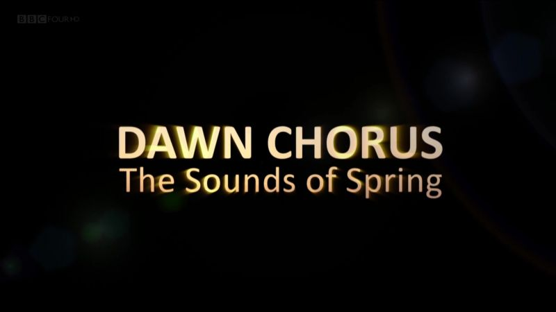 Image: Dawn-Chorus-The-Sounds-of-Spring-Cover.jpg