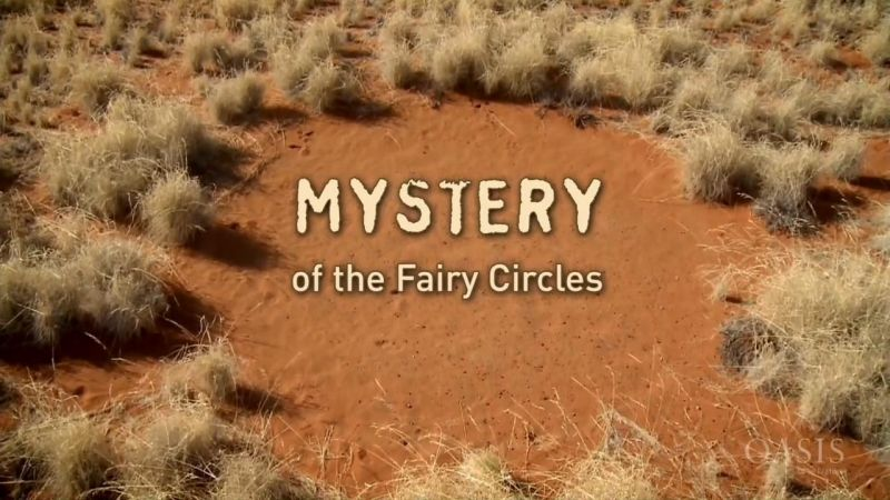 Image: Mystery-of-the-Fairy-Circles-Cover.jpg