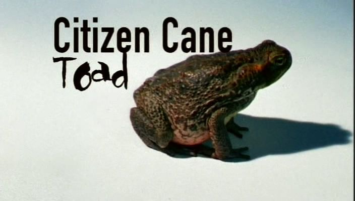 Image: Citizen-Cane-Toad-Cover.jpg