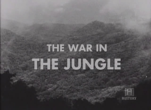 Image: War-in-the-Jungle-Cover.jpg