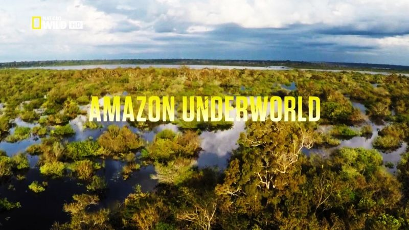 Image: Amazon-Underworld-Cover.jpg