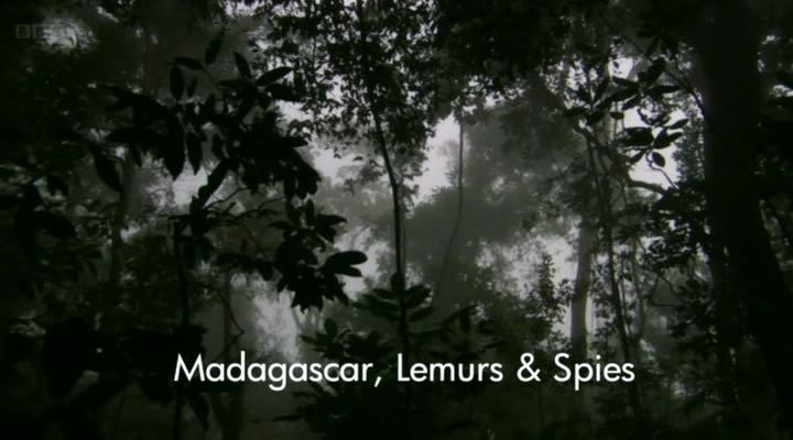 Image: Madagascar-Lemurs-and-Spies-Cover.jpg