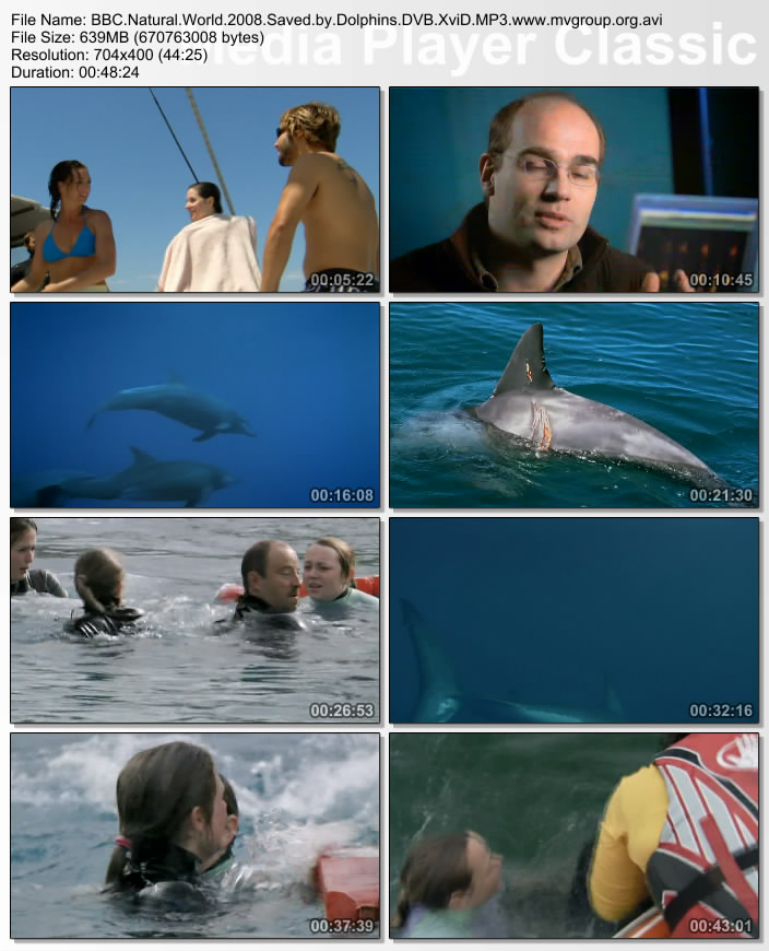 Image: Saved-by-Dolphins-Screen0.jpg
