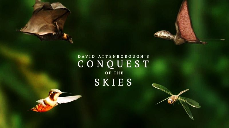 Image: Conquest-of-the-Skies-Cover.jpg