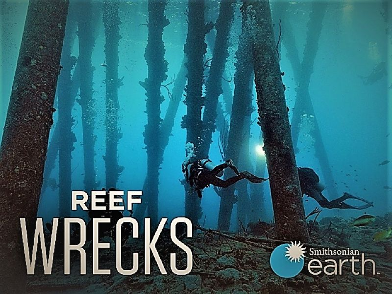 Image: Reef-Wrecks-Series-1-Cover.jpg