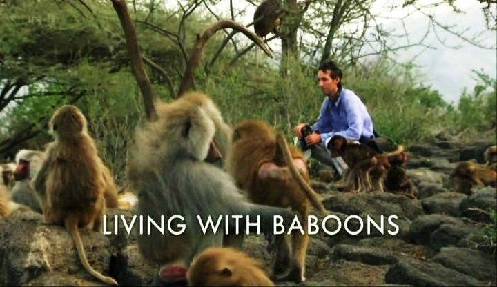 Image: Living-with-Baboons-Cover.jpg