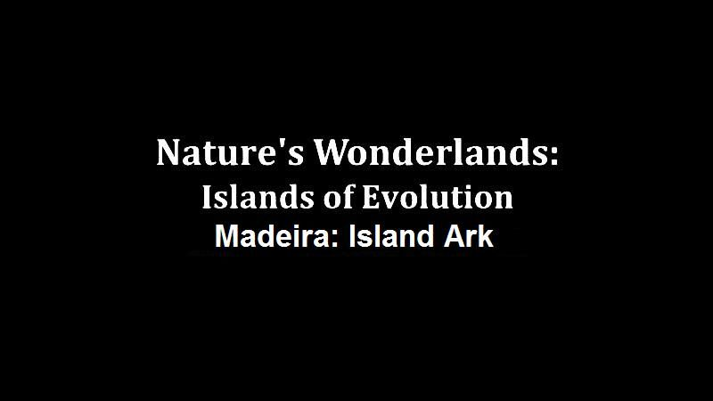 Image: Nature-s-Wonderlands-Islands-of-Evolution-Madeira-Cover.jpg