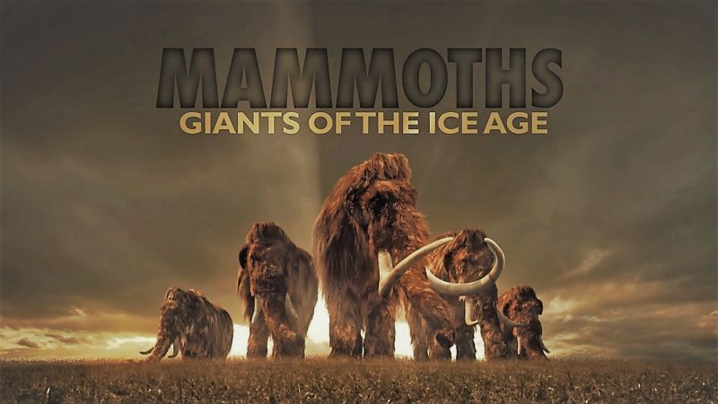 Image: Mammoths-Giants-of-the-Ice-Age-Cover.jpg
