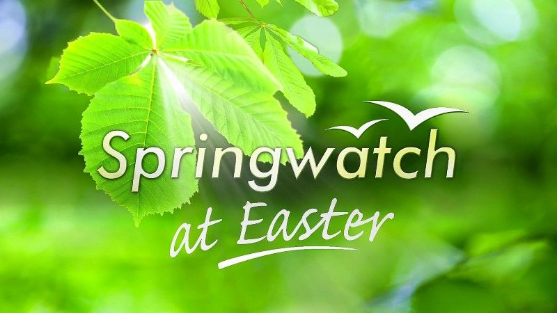 Image: Springwatch-at-Easter-2016-Cover.jpg