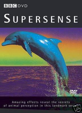 Image: Supersense-Cover.jpg