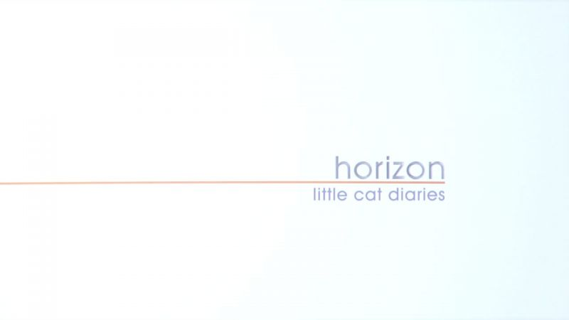 Image: Little-Cat-Diaries-Cover.jpg