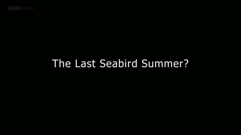Image: The-Last-Seabird-Summer-Series-1-Cover.jpg