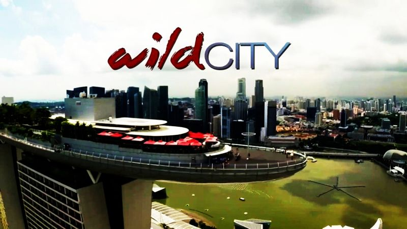Image: Attenboroughs-Wild-City-Cover.jpg