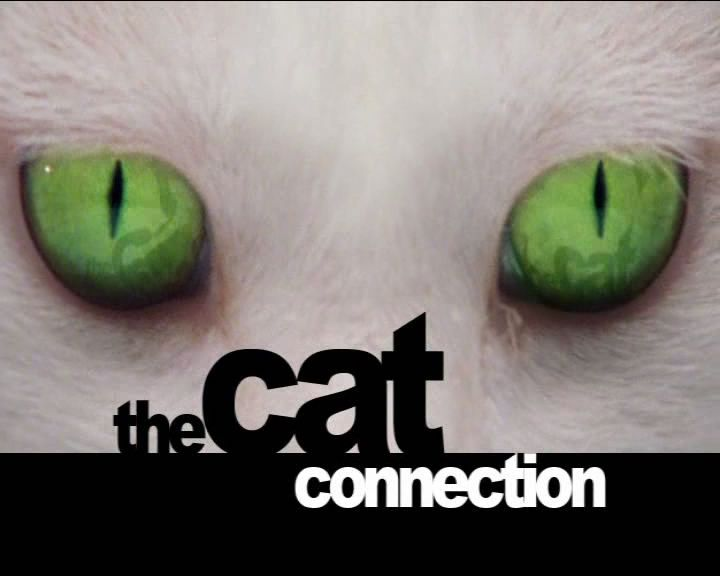 Image: The-Cat-Connection-Cover.jpg
