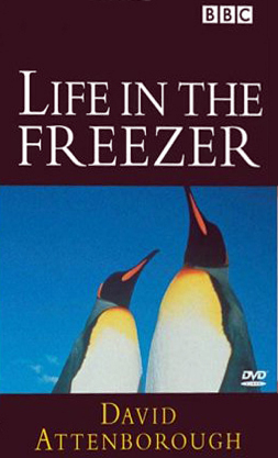 Image:Life_in_the_Freezer_Cover.jpg
