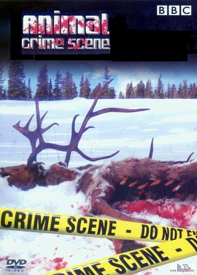 Image: Animal-Crime-Scene-Cover.jpg