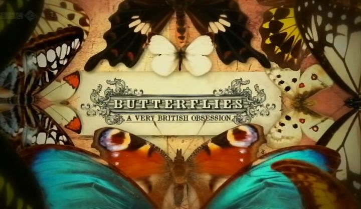 Image: Butterflies-A-Very-British-Obsession-Cover.jpg