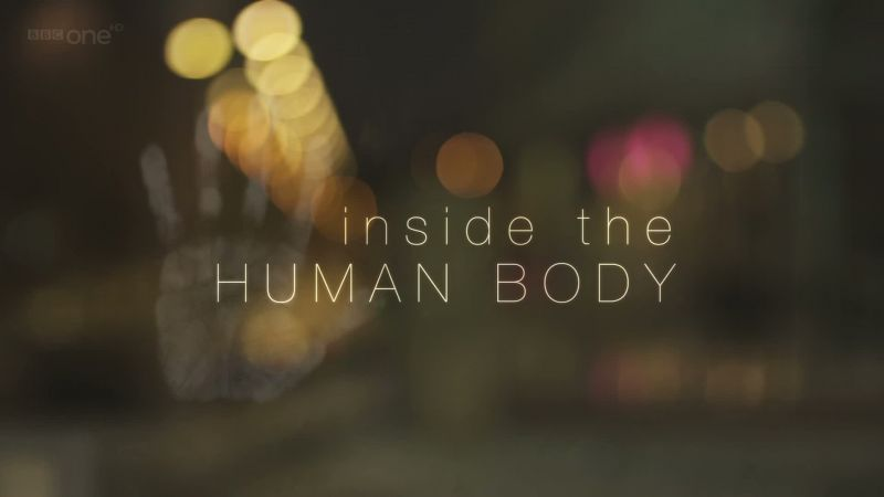 Image: Inside-the-Human-Body-Best-of-Series-Cover.jpg