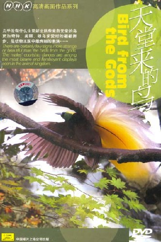 Image: Birds-from-the-Gods-Cover.jpg