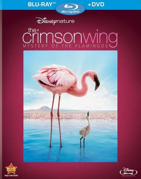 Image: The-Crimson-Wing-Mystery-of-the-Flamingos-BBC-Cover.jpg