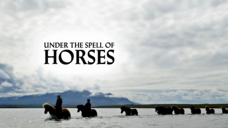Image:Under-the-Spell-of-Horses-Screen0.jpg