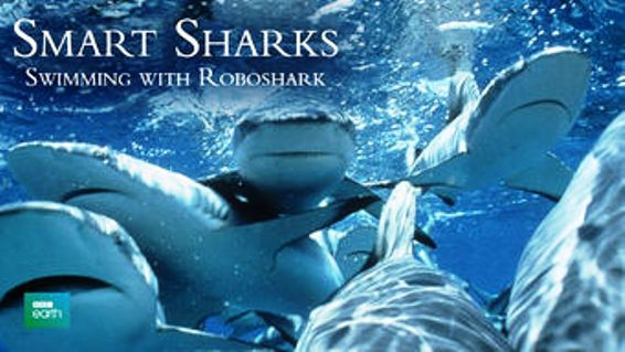 Image: Smart-Sharks-Swimming-with-Roboshark-Cover.jpg